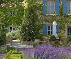 country, home, and lavender image