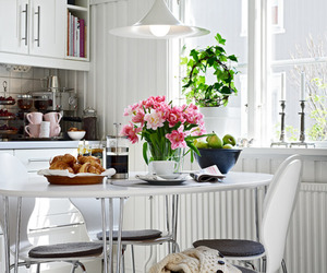 kitchen and interior image