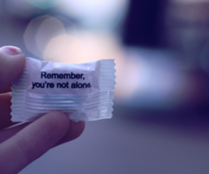 alone, text, and candy image