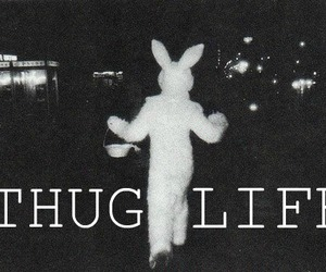 life, thug, and thug life image