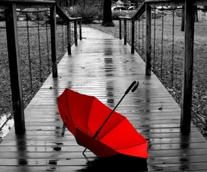 red, umbrella, and rain image