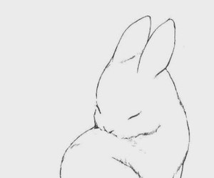bunny, art, and drawing image