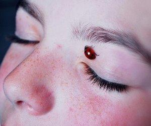 ladybug and eyes image