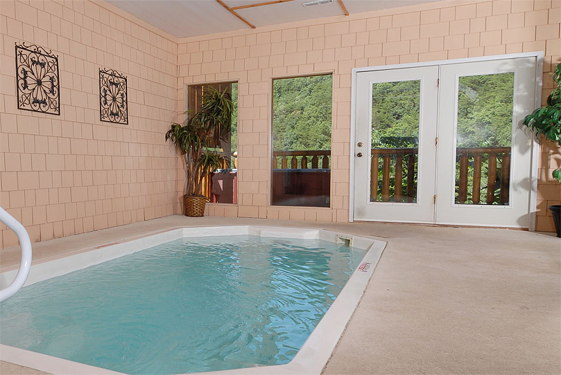 Cool Small Indoor Pool Design With Plants And Nature Views