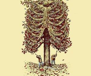 tree, nature, and life image