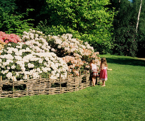 flowers and children image