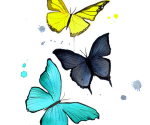 butterfly, mariposa, and papillon image