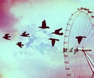 bird, sky, and let it go image