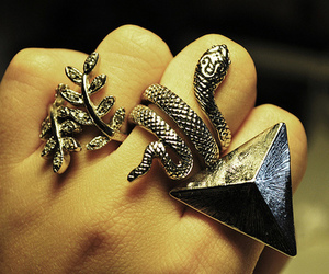 rings, snake, and triangle image