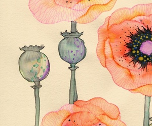 art, watercolor, and floral image