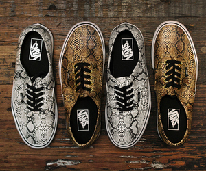 vans, shoes, and snake image