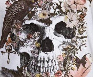 skull, flowers, and bird image