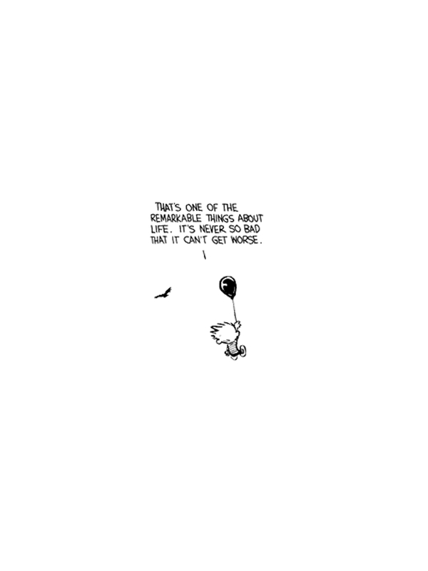 calvin and calvin and hobbes image