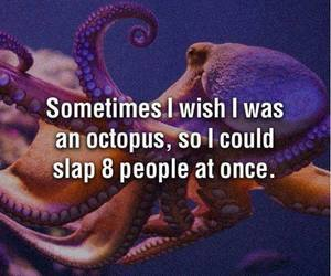 octopus, funny, and slap image