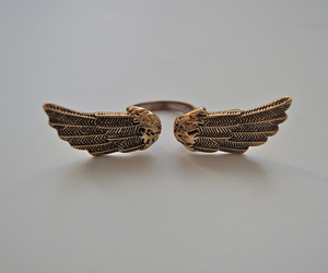 ring and wings image