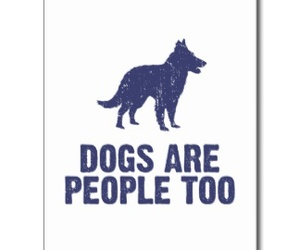 dog, dogs, and people image