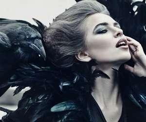 dark, raven, and crow image