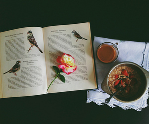 breakfast, book, and vintage image