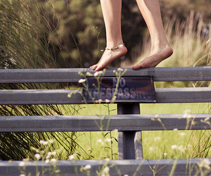 feet, fence, and photograph image