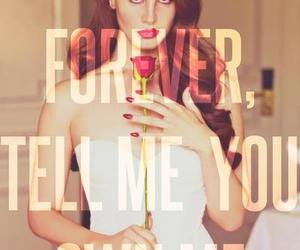 lana del rey, quote, and rose image