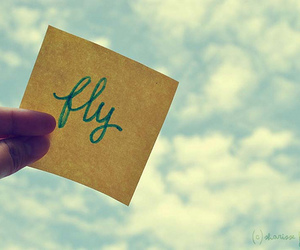 fly, sky, and text image