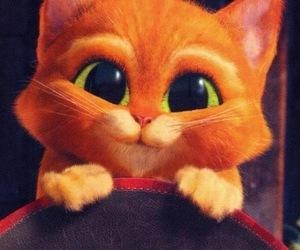 adorable, photo, and big eyes image