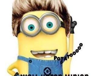 minions, niall horan, and one direction image