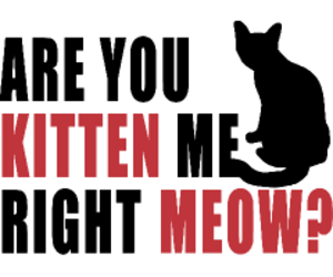 cats, graphic art, and fun image