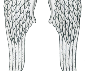 overlay, transparent, and wings image