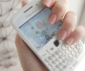 blackberry, nails, and white image