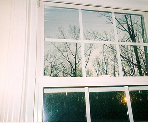 window, tree, and vintage image