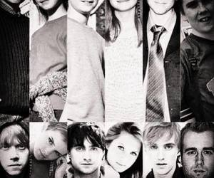forever, harry potter, and hp image