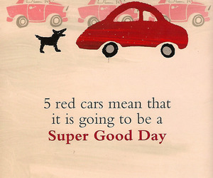 book, red cars, and dog image