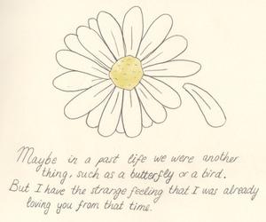 art, beautiful, and daisy image