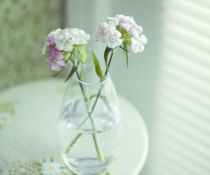 flowers, vase, and water image