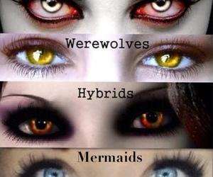 vampire, mermaid, and hybrid image