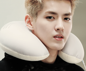 chinese, kris, and exo image