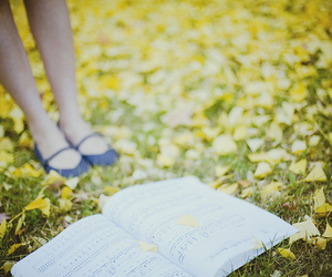 book, grass, and music image