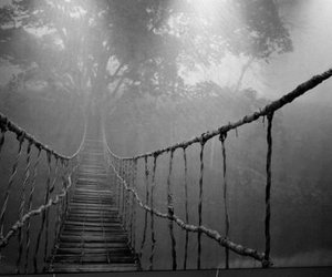black and white, bridge, and photography image