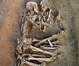 love, skeleton, and bones image