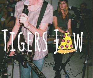 tigers jaw image