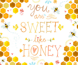 honey, sweet, and text image