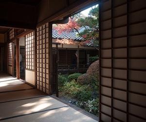 japan, autumn, and theme image