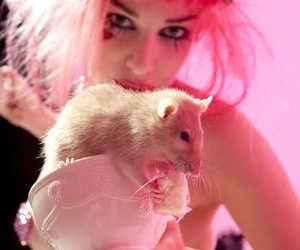 Emilie Autumn and rat image