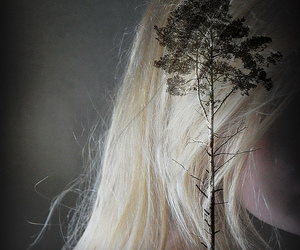 blonde, explore, and hair image