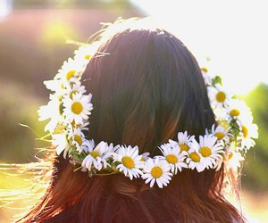 daisy, fashion, and floral image