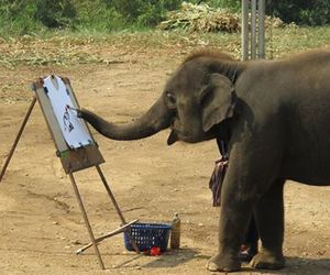 elephant, animal, and painting image
