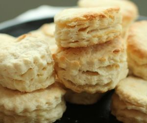 biscuit image