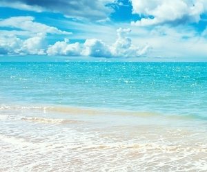 beach, Caribbean, and ocean image