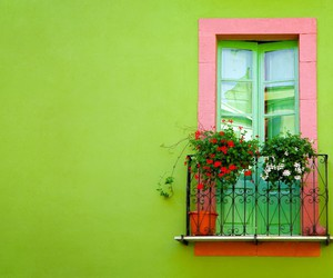 doors, flowers, and green image